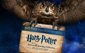 Harry Potter and The Philosopher's Stone™